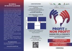 cremona Profit:Non Profit 2014